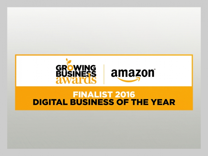 John Pye - Amazon digital business of the year - Finalist