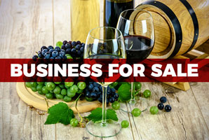 The-Group-Business-For-Sale